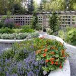 Alaska Botanical Garden