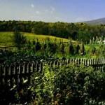 Ash Lawn-Highland