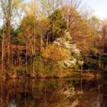 Caesar Creek Lake Visitor Center