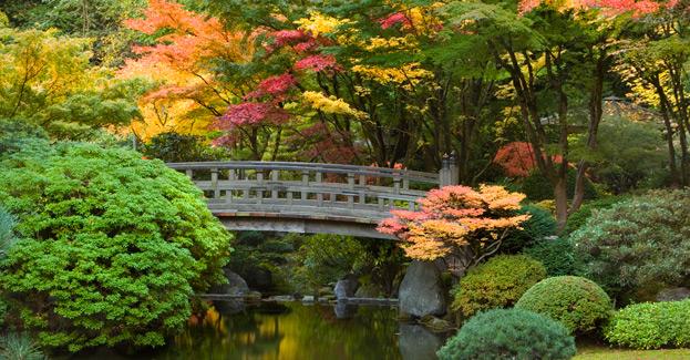 Portland Japanese Garden Naturefind