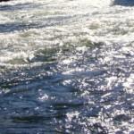 Big Marsh Creek Wild & Scenic River