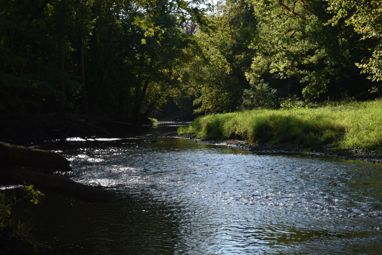 Patapsco Valley State Park - Hilton Area