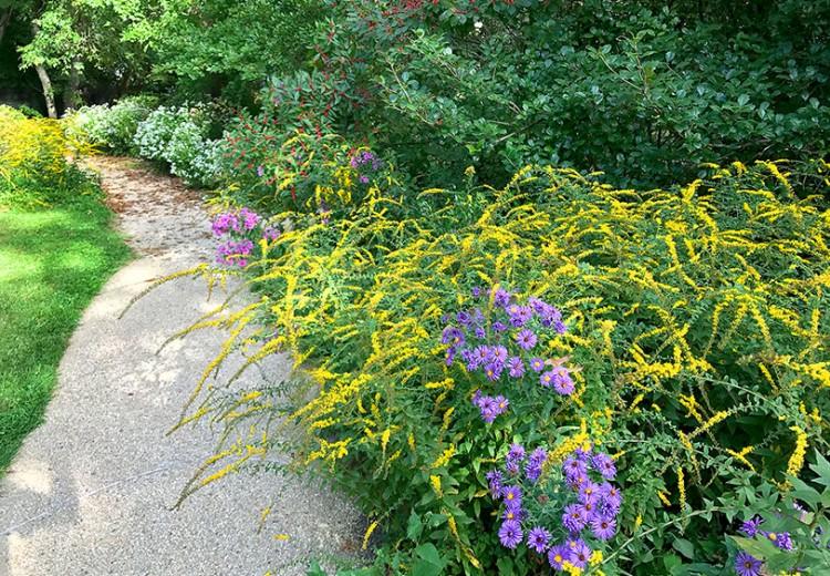campus-gardens-latesummer-walk-MarkGormel